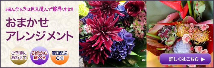 公演祝いに贈る花 ネイティブフラワーイーダおまかせオーダーアレンジメント装花 楽屋花にも大人気です